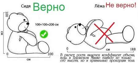 Как измерить размер Плюшевого Медведя.